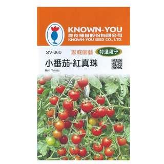 🚚 {綠花緣} 農友 小番茄-紅珍珠 - 特選種子