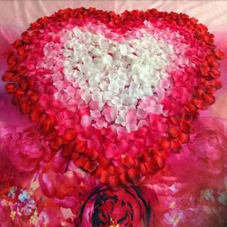 Ready stock free shipping 100 pieces Flower petals rose