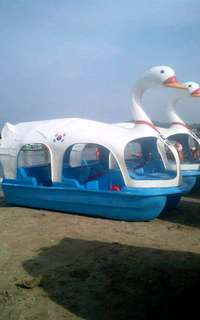 Pedal swan river boat for sale