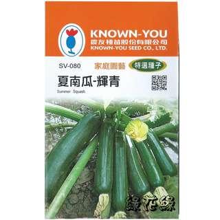 🚚 {綠花緣} 農友 夏南瓜-輝青 - 特選種子