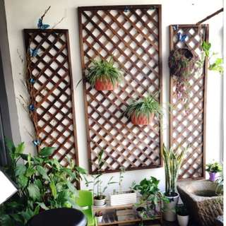 Grid Plant Shelf - Hanging Plant Stand