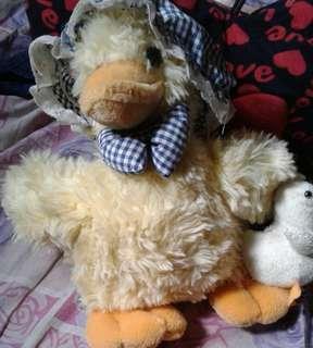 Teddy bear (duck )