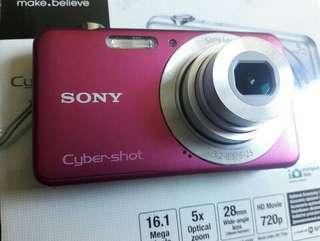 Sony Cybershot DigiCam - Fresh