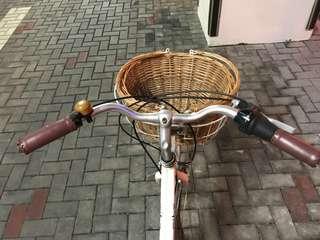 Bicycle Urban Woman
