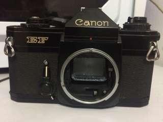 Canon EF (Body)