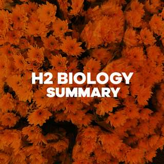 H2 CONCISE BIOLOGY SUMMARY (RJC)