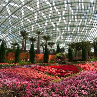 Gardens By The Bay - Flower Dome + Cloud Forest ****************** Etickets **************