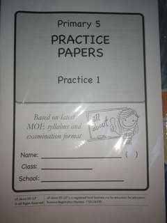 Primary 5 English Papers