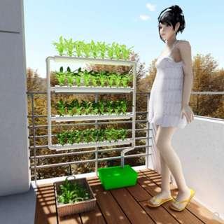 Wall mount hydroponics NFT or aquaponics