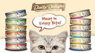(Promo)Daily Delight (Jelly and Pure)