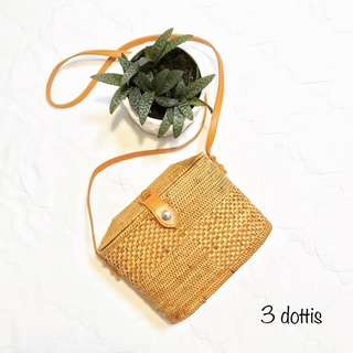 Oval Square Bag with Clip