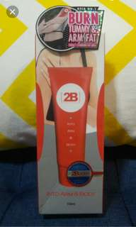 2B Alternative Into Arm and Body