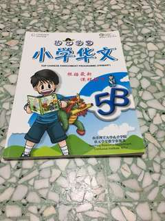 P5 Chinese assessment book