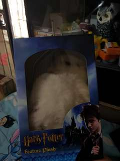 Owl by Harry Potter