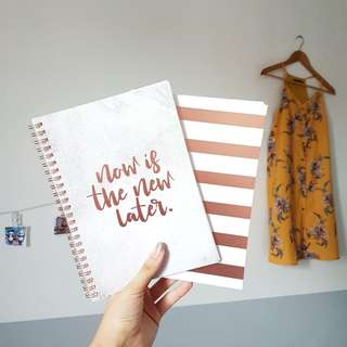 """$6 """"Now is the New Later"""" A5 Notebook & ROSE GOLD and WHITE stripes Notebook"""