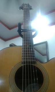 Guitar takamine d50c