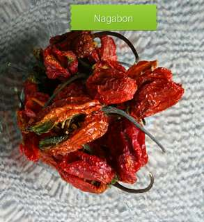 Dried Nagabon fruit 5g (Available from 25th May)