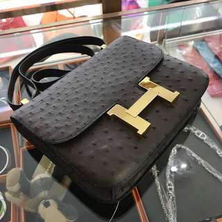 Hermes constance orstrich