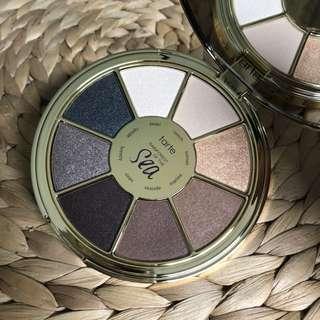 BINB Tarte Rain Forrest of the Sea (vol.2) palette