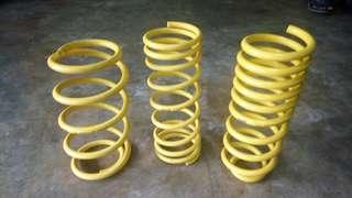 Apex coil spring