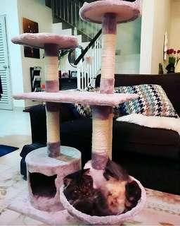 Cat Playhouse