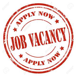 Full Time/Part Time Service Crew (Indoor Playground)