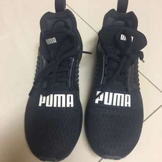🚚 PUMA IGNITE LIMITLESS  女鞋