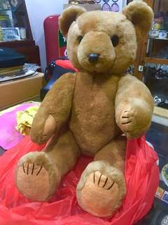 Pure Wool Teddy Bear NOS
