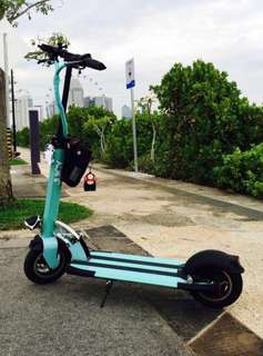 Passion 10 Electric Scooter