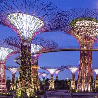 Gardens By The Bay (2 Domes) Tickets 🌺