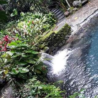 Hidden Valley Springs, Laguna Day Tour