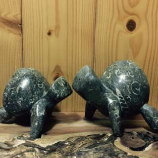 貝殼化石意象龜