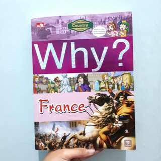 Why? France (World History Comics)