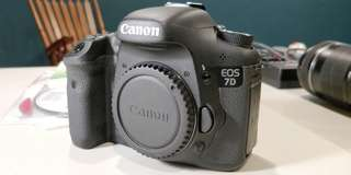 Canon EOS 7D Camera Body wt EF-S 18~135mm IS Kit Lens