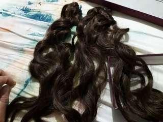 shibuya hair clip brown