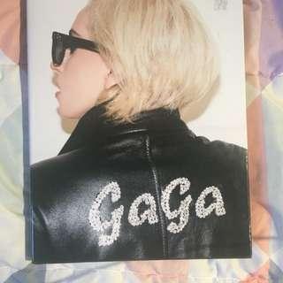 Gaga book