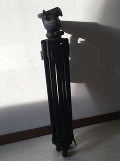 TH-650 DV Tripod