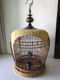 "16"" MOP  Thai merbok cage"