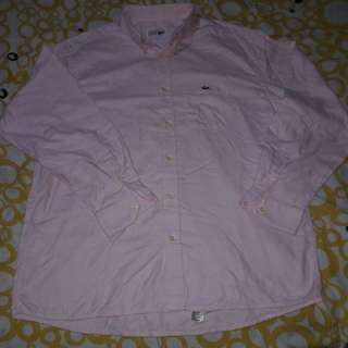 Original Lacoste Chemise Longs Sleeves Shirt