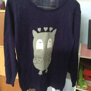 Sweater owl
