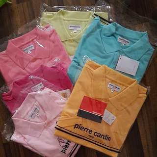 Polo T Shirt  (XL only)