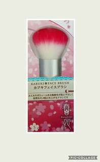 Expandable or Retractable Kabuki Face Brush