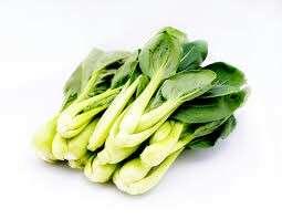 Gardening ♡ 小白菜 Brassica Chinensis Seeds X 25