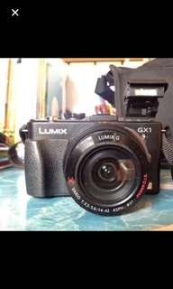 PanaLumix GX1 with X power 14-42 Zoon lens