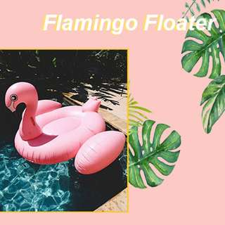 Giant Flamingo Floater