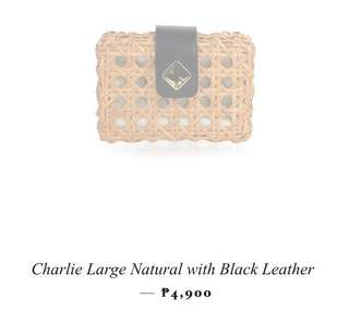 Aranaz Charlie large clutch with strap