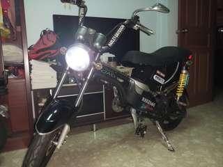 Harley Davidson Designed SASO Ebike 48V 30aH 500W