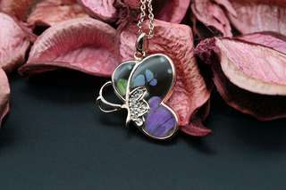 Navia Jewelry Real Butterfly Wing Graphium weiskie Alloy Necklace Korea