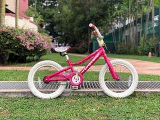 "Gary Fisher Kids Bicycle 12"""