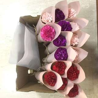 Single Stalk Carnations in Korean Cone Wrapping / Special Clearance Only